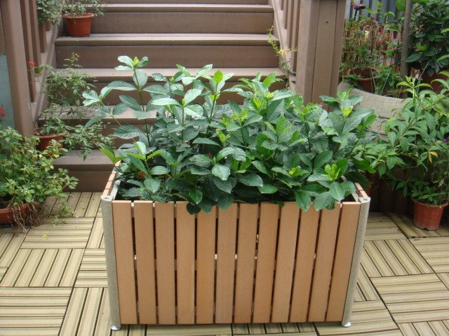 Commercial Outdoor Planter P-002 Cover Image