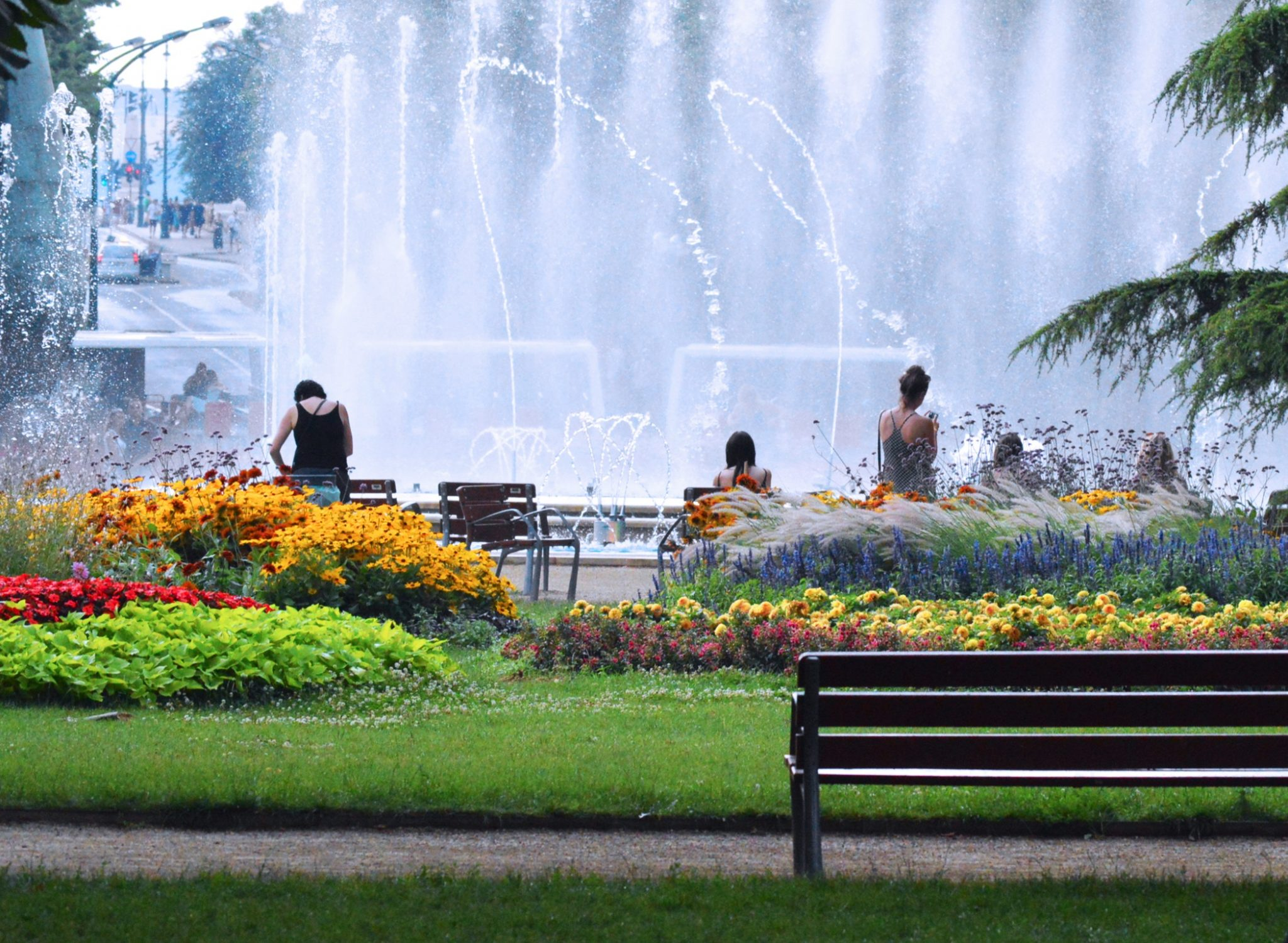 Park with fountain flowers and benches